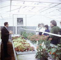 Class in the Greenhouse